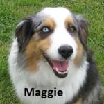 MAGGIE 15